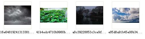 2989038b60cf0306bf06d3e40c804d38002.png